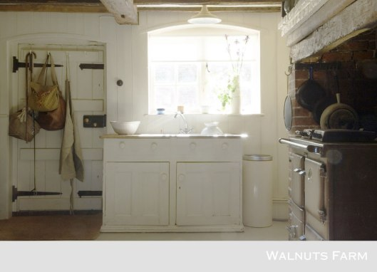 1667-walnuts-farm-location-house-kitchen-3